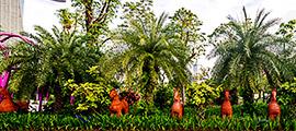 新加坡濱海灣花園門票(現票),新加坡濱海灣花園門票價格,新加坡濱海灣花園門票預訂,新加坡濱海灣花園官網,新加坡濱海灣花園地址,新加坡濱海灣花園電話,