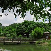 亞馬遜原始生態園