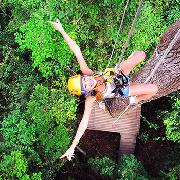泰國清邁叢林飛躍-Flight of The Gibbon