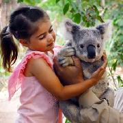 黃金海岸可倫賓野生動物園門票