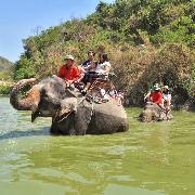 芭提雅Thapparya大象村多項目體驗門票