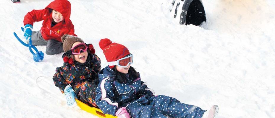 韓國雪兜+聖誕老人村+草莓園一日遊