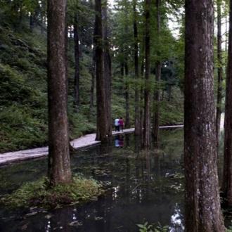 月老山愛情主題森林公園