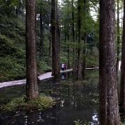 溫州市月老山愛情主題森林公園