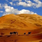 鄂爾多斯庫布齊神光響沙旅遊區