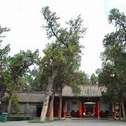 中國洛陽關林