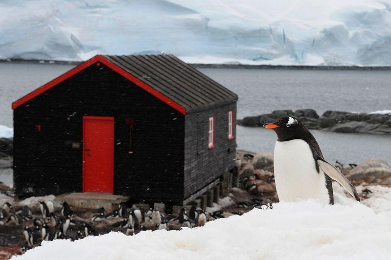 極地自有聖潔體驗——南極