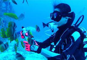 沙巴沙比島深潛體驗一日遊