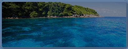 皇帝島+蜜月島雙體遊艇賞豚浮潛海釣